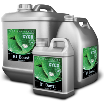 b1-boost-group-image